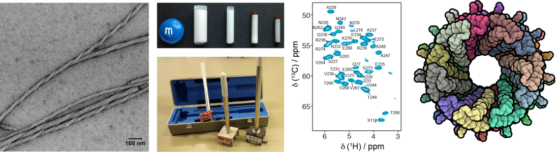 amyloid_NMR_spectra_filament